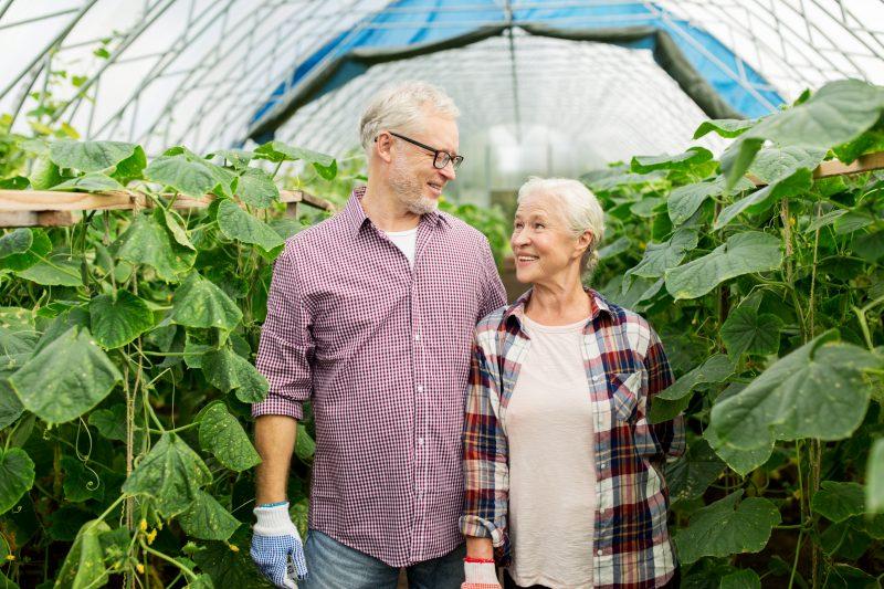 Seniors Retiring Planning