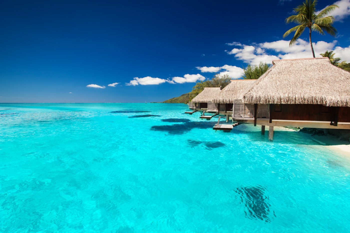 Bora Bora Investing Holiday